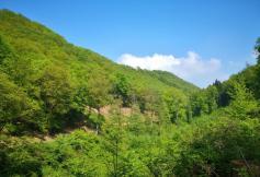 Blick ins Tal des Gesterbachs