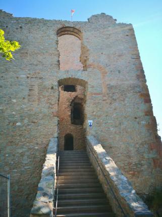 Bergried der Saarburg mit Turm im Turm