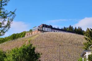 Schloss Saarstein oberhalb von Serrig