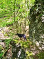 Ein Schmaler Pfad führt an steilen Felswänden vorbei hinunter ins Kautertal