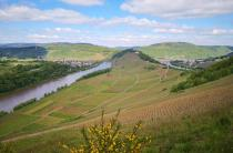 Blick zur Marienburg an der schmalsten Stelle der Flussschleife