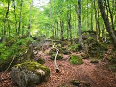 Aufstieg durch das Felsenlabyrinth