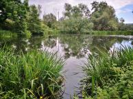 Teich vor dem Kloster