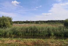 Wasserflächen in den Maasdünen