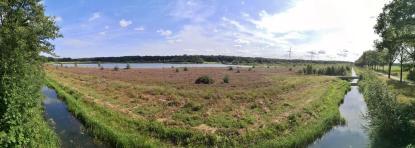 Panoramaaufnahme von einem Hochstand am Vogelschutzgebiet