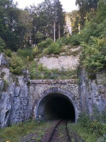 Tunnel der Eisenbahnstrecke bei Thiergarten