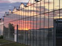 Sonnenuntergang im Spiegel eines Gewächshauses