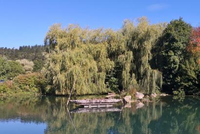 Teich am Bootshaus