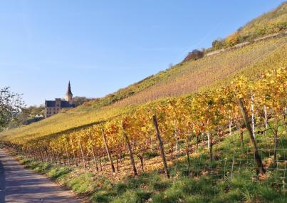 Wir nähern uns Schloss Arenfels