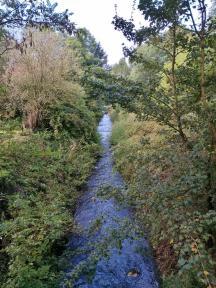 Mündung des Rotbachs in den Rhein