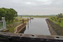 Mündung des Spoykanals in den Griethauser Altrhein, der die Verbindung zum Rhein herstellt