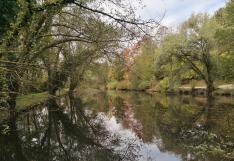 Teich am Schwarzbach im Stadtpark von Homberg