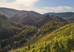 Auf dem Weg Richtung Altenahr: Burgblick