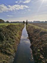 Der Rodebach bildet hier die Grenze. Links Deutschland, rechts die Niederlande.