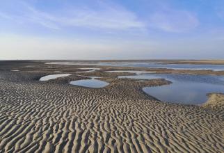 Blick auf die große Sandbank