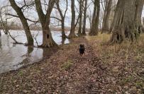 Wir laufen an der vorgeschobenen Wasserkante entlang