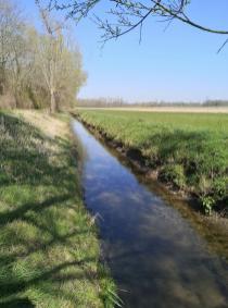 Am Jüchener Bach kurz vor seiner Mündung in den Nordkanal