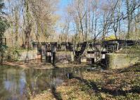 Abzweigung von Obererft und Selikumer Mühlenerft im Selikumer Park