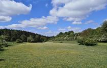 Landschaft zwischen Kendenich und Sötenich