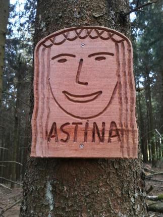 Im Spukwald Astina unterhalab des Gipfels