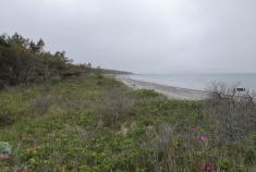 Blick von der Grenze des Nationalparks in den gesperrten Bereich