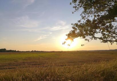 Blick in die Felder vor unserem Stellplatz