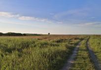 Zufahrtsweg zur Naturschutzstation auf dem Großen Schwerin - für uns leider gesperrt