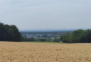 Panoramablick Richtung Köln vom Uppersberg