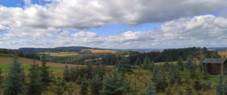 Blick in die Landschaft des Vogtlands hinter Reinsdorf