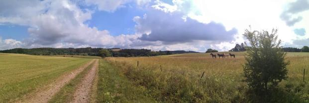 Panoramablick vom Enzenberg ins Genfbachtal