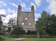 Ruine der Burg Hoher Schwarm, Landseite