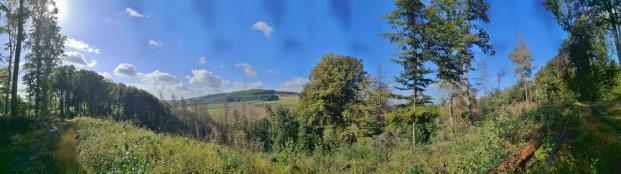 Panoramablick vom Meierberg zum Bellerberg