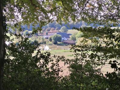 Blick aus dem Wald auf das Gut Papendelle im Rotthäuser Bachtal