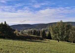 Blick zum Zauberwald am Haspelberg im Hintergrund