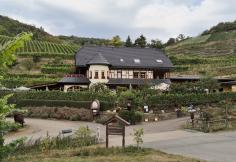 Winzer-Restaurant in den Weinbergen oberhalb von Mayschoß