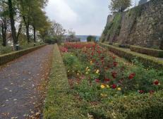 Rosengarten vor der Abtei