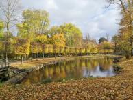 Wasserspiegelung im Park von Schloss Wickrath