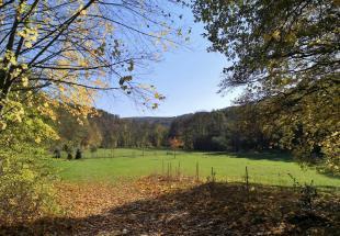 Nach einigen Kilometern weitet sich das Tal und bietet Platz für Weiden links und rechts des Flusses