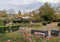 Rosengarten am Schloss