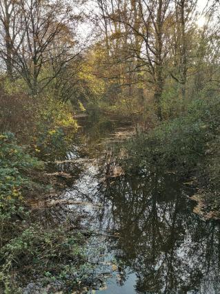 Zwischen Unterbacher See und Elbsee quert auch die Düssel auf ihrem Weg Richtung Rhein das Gebiet, jedoch ohne eine Verbindung zu den Seen