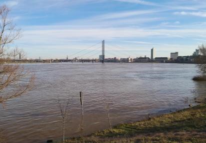 Das Rheinknie präsentiert sich als eine riesengroße Wasserfläche
