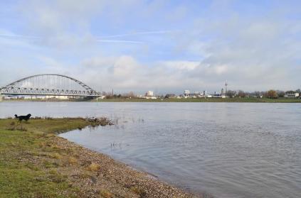 Blick hinüber nach Düsseldorf