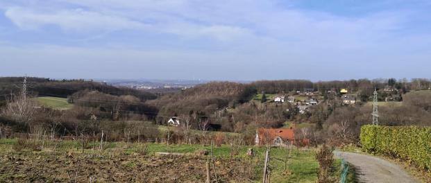 Fernblicke ins Ruhrgebiet am Ortsrand von Westende