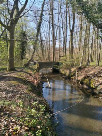 Der Mühlenbach, eine Abzweigung der Rur, speist den Wassergraben von Schloss Kellenberg und zwei Mühlen