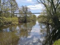 Teich am Staader Bach neben der Ruhr