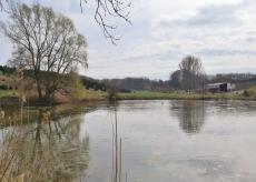 Fischteich am Hasselbach bei Gut Diepensiepen