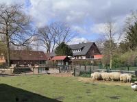 Arche-Park Tiergehege im Witthausbusch