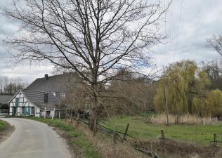 Gehöft Benthausen