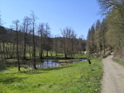 Teiche im Eifgenbachtal