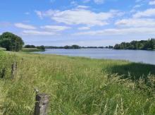 Blick auf den Roosenhofsee